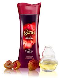 My New Obsession-Caress Body Wash in Scarlet Blossom